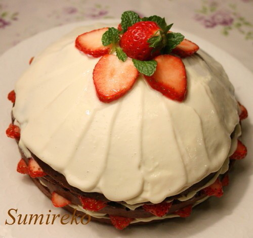 strawberry chocolate cake1.jpg