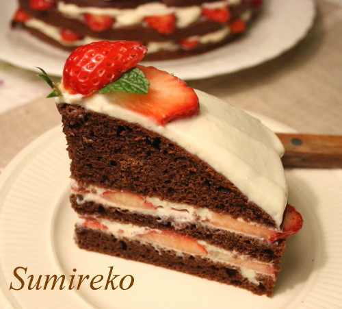 strawberry chocolate cake2.jpg